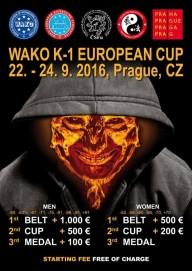 European cup K-1, WAKO