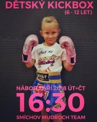 Nábor dětí, kickbox - září 2018